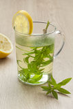 Glass with lemon verbena tea Royalty Free Stock Images