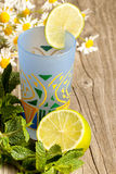 Glass of lemonade with mint Royalty Free Stock Photos