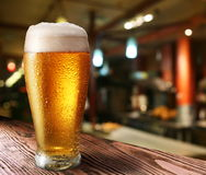 Glass of light beer Royalty Free Stock Photos
