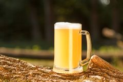 Glass of light beer against of green trees outdoor