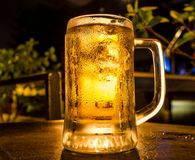Glass of light beer. At bar royalty free stock photo