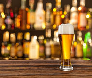 Glass of light beer with bar on background. Glass of light beer served on wooden desk. Bar on background Royalty Free Stock Photo