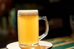 Glass of light beer on bar table. Royalty Free Stock Photos