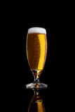 Glass of light beer . Glass of light beer  on a black background Stock Photography