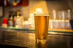 Glass of light beer on a dark pub. Stock Image