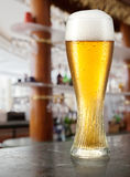 Glass of light beer with drops in a pub. Royalty Free Stock Images