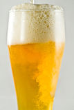Glass of light beer with foam.  Royalty Free Stock Image
