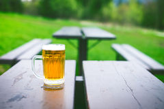 Glass of light beer with foam on a wooden table. Garden party. Natural background. Alcohol. Draft beer. Stock Images