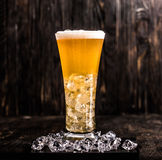 Glass of light beer with ice and foam Stock Images