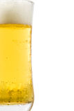 Glass of light beer isolated Stock Images