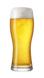 Glass of light beer isolated on a white Royalty Free Stock Images