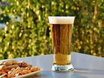 Glass of light beer and peanuts on the table Stock Photos