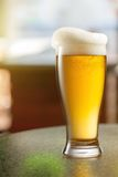 Glass of light beer in pub Stock Photo