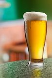 Glass of light beer in pub Stock Photography