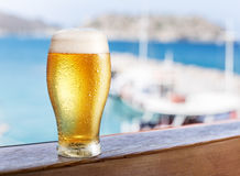 Glass of light beer on the  seaside bar counter. Royalty Free Stock Image