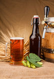 Glass of light beer and spikes of barley Royalty Free Stock Image