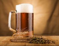 Glass of light beer on table Royalty Free Stock Photography