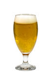 Glass of light beer on a white background. Glass of beer on a white background royalty free stock photography