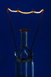 Glass light bulb with burning filament upright with blue backgro Stock Photo