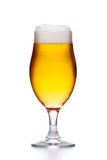 Glass of light fresh gold beer with foam isolated on white Royalty Free Stock Photos