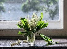 glass liljadal Arkivbilder