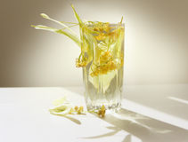 Glass of lime tea and linden flowers. Summertime Royalty Free Stock Image