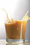 glass liqueur Royaltyfria Foton