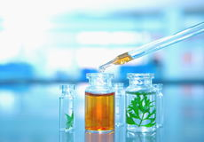 Glass liten medicinflaska med det gröna bladet med orange lösningsdroppe i labbet Royaltyfri Fotografi