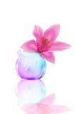 Glass liten vas med en orkidé Arkivfoto