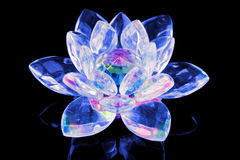 Glass lotus flower Royalty Free Stock Image