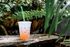 Glass of lychee soda. With tree background Royalty Free Stock Photo