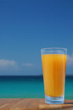 Glass of Mango Juice. Glass of Juice Against Tropical Sea royalty free stock images