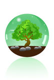 Glass marble of big tree Royalty Free Stock Images