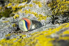 Glass marble on rocks Stock Photography