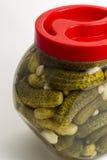 Marinated cucumbers Stock Photos