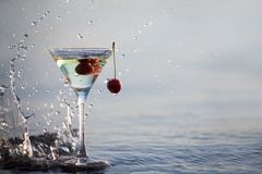 glass martini Royaltyfria Bilder