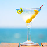 Glass of martini bianco at the wooden pier. Concept of summer va Royalty Free Stock Photography