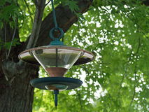 A Glass and Metal Birdfeeder. Hanging from a Tree Royalty Free Stock Photos
