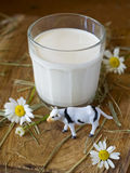 Glass of milk Royalty Free Stock Images