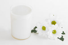 Glass of milk. And white camomiles on a white background (with reflection on a black dish royalty free stock image
