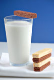 Glass of milk and biscuits Royalty Free Stock Photos