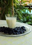 Glass of milk, blackberries and blueberries Stock Photos