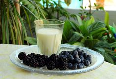 Glass of milk, blackberries and blueberries Stock Photography