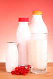 Glass of milk and bottle Stock Images