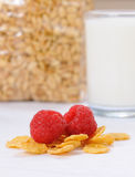 Glass of milk and cereals Stock Images