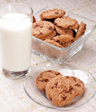 Glass of milk and chip cookies Royalty Free Stock Photo