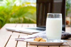 Glass of milk with cookies Stock Image