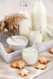 Glass of milk with cookies Stock Photos