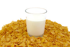 Glass of milk and corn flake cereals on a white Royalty Free Stock Images