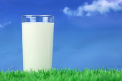 Glass with milk on green meadow and copyspace Stock Photography